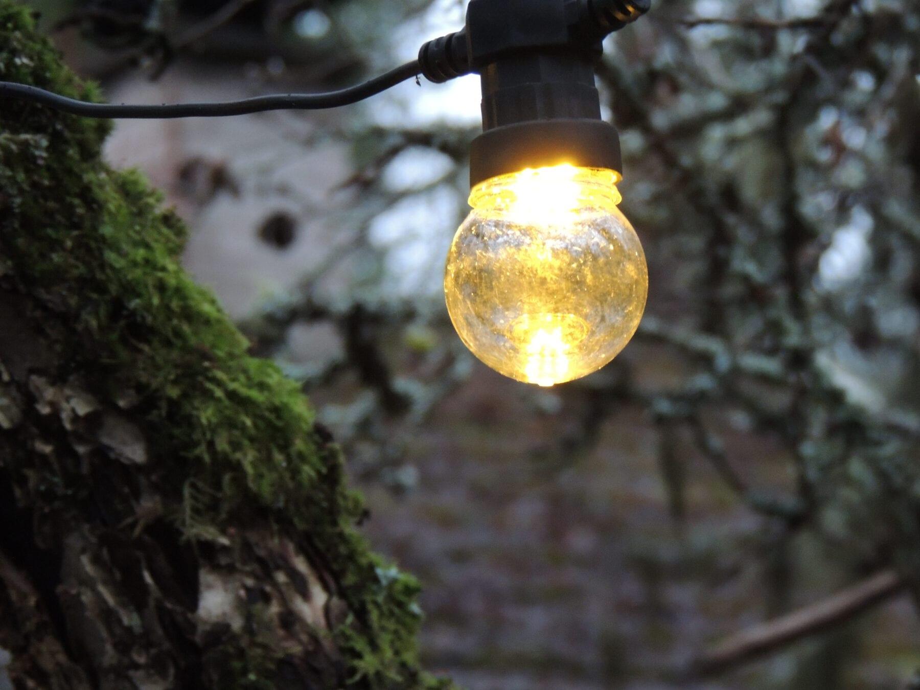 Omenapuiden ylle pujotteua valonauhaa